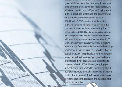 AEDC Economic Forecast Report: 2009